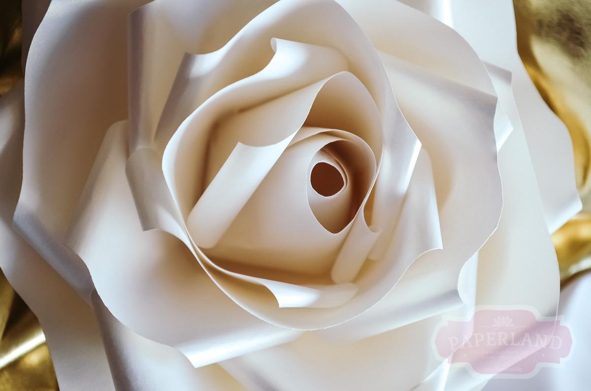 Розы из белой бумаги