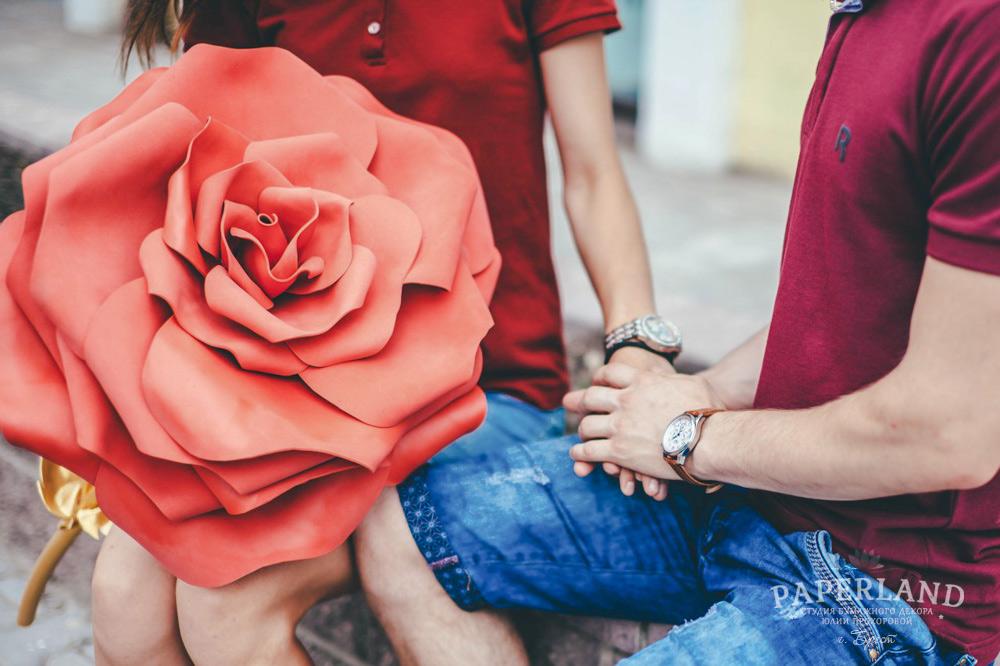 Фото красивых красных роз