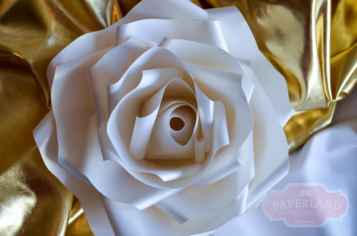 Большие розы из дизайнерской бумаги
