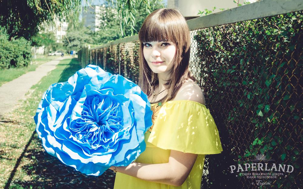 Большая роза голубого цвета