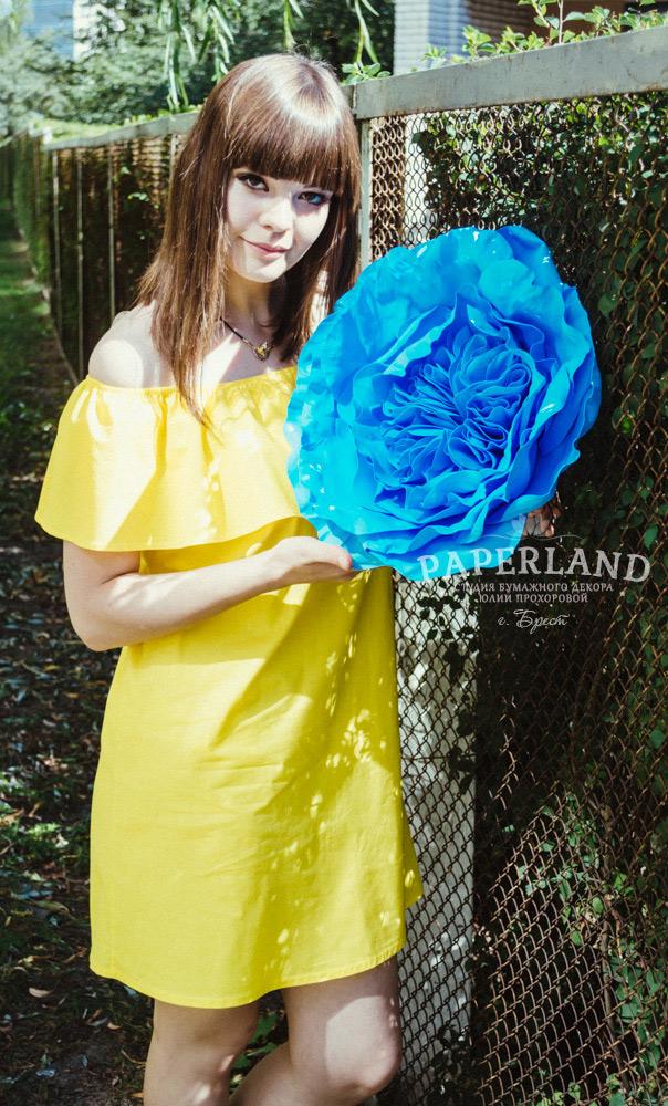 Гигантская пионовидная роза