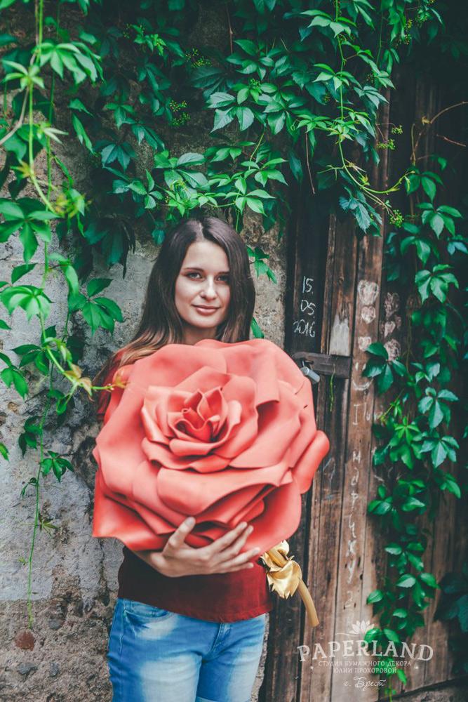 Красные розы на фото