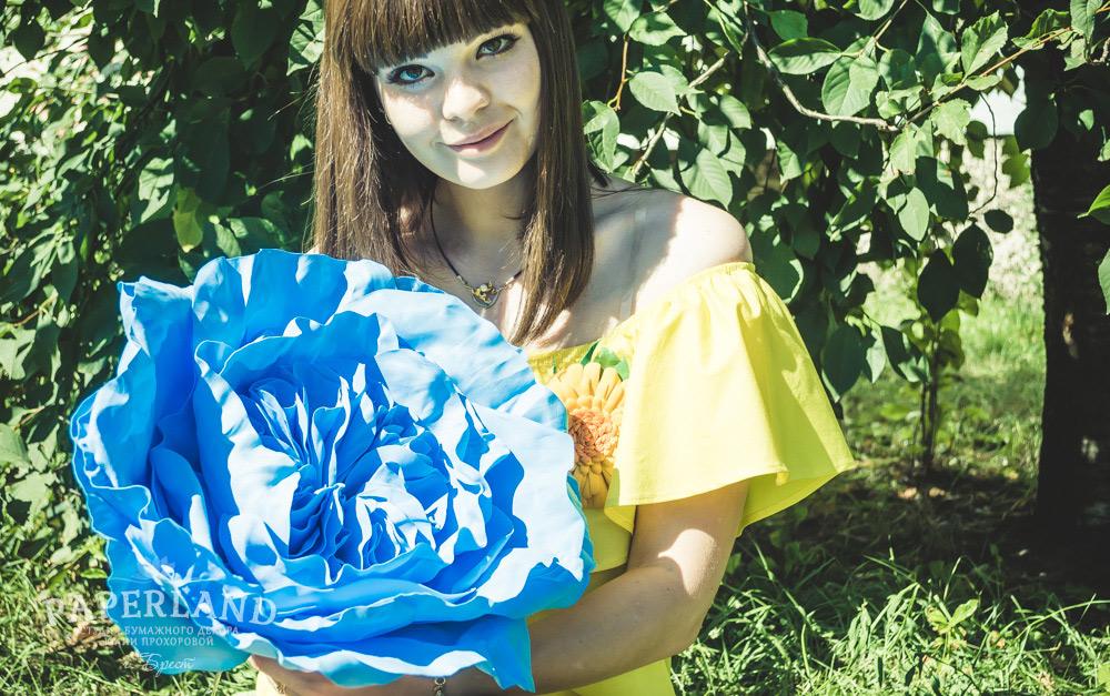 Пионовидные розы синего цвета